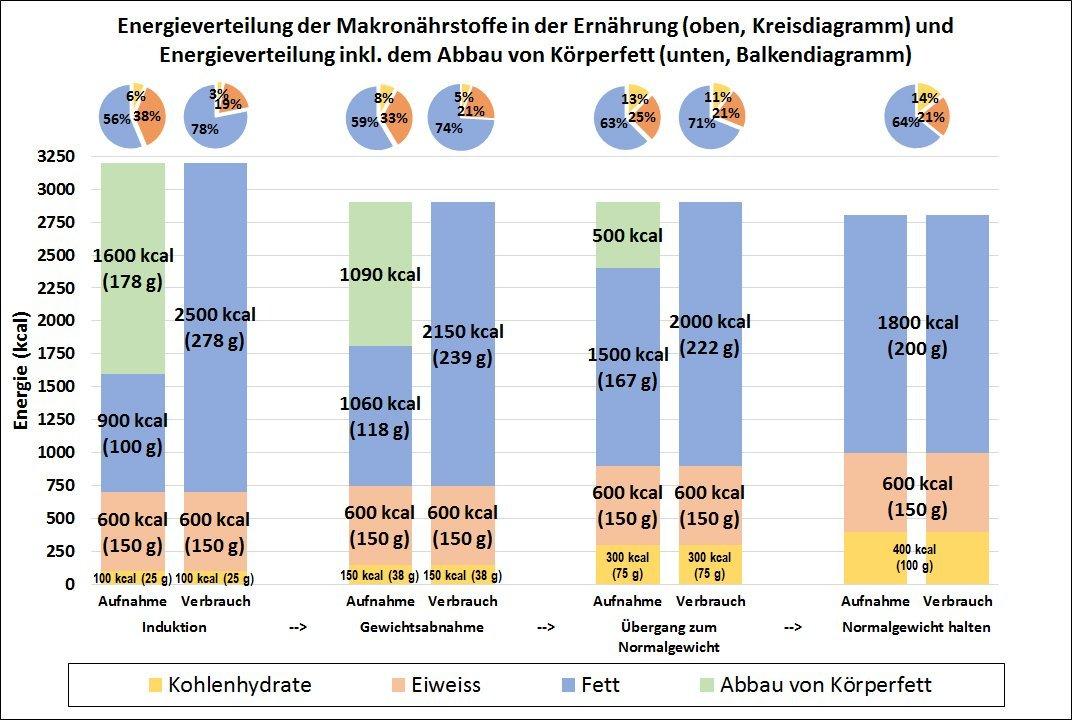 Schema 1: Beispiel für die Energieverteilung der Makronährstoffe bei der Gewichtsabnahme mit kohlenhydratarmer Ernährung