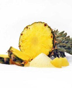 589-03_Fruchtpulver-ANANAS-Ananaspulver