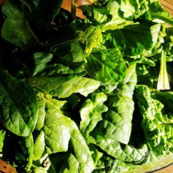 Rezept Spinat Feta Strudel lowcarb glutenfrei keto