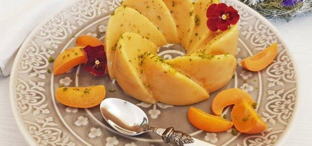 Rezept Marillen Aprikosen Kollagenpudding lowcarb glutenfrei